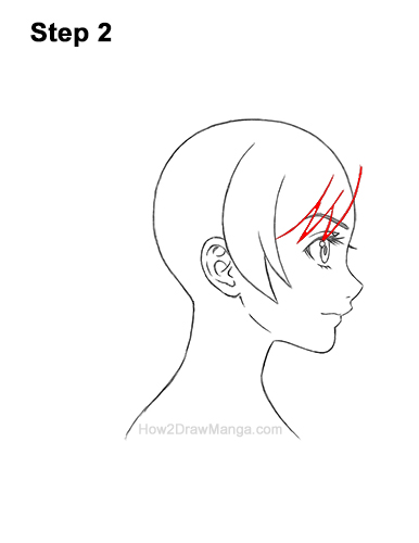 How to Draw Manga Girl Woman Ponytail Hair Side View Anime 2