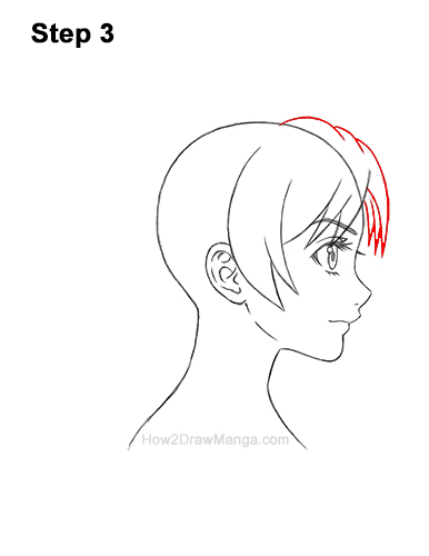 How to Draw Manga Girl Woman Ponytail Hair Side View Anime 3